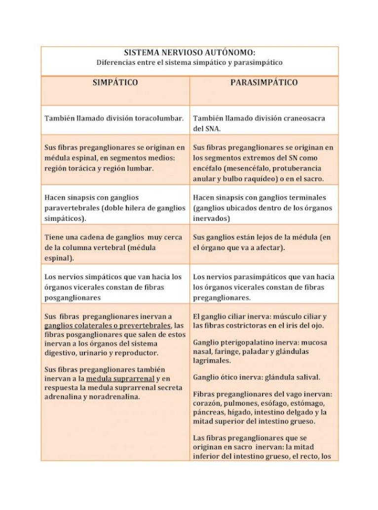 Sistema Nervioso Autónomo Diferencias Entre El Sistema Nervioso Simpático Y Parasimpático Pdf Document